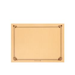 Mantel individual 31x43 500uds